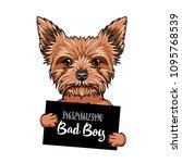 yorkshire terrier bad boy. dog... | Shutterstock .eps vector #1095768539