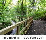 wood bridge to the forest in... | Shutterstock . vector #1095805124