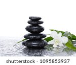 still life with white orchid ... | Shutterstock . vector #1095853937