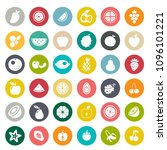 vector fruits icons set   fresh ... | Shutterstock .eps vector #1096101221