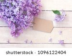 lilac branch with empty paper... | Shutterstock . vector #1096122404