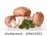 isolated mushrooms and parsley | Shutterstock . vector #109614521