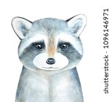 raccoon character portrait.... | Shutterstock . vector #1096146971