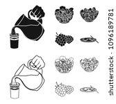 fruit  vegetable salad and... | Shutterstock .eps vector #1096189781