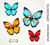 butterfly illustration. set of... | Shutterstock .eps vector #1096236731