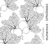 coloring seamless pattern beet... | Shutterstock .eps vector #1096306661