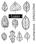 set of outline leaves vector... | Shutterstock .eps vector #1096312964