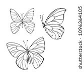 set of silhouette butterflies... | Shutterstock .eps vector #1096364105