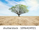 big tree in the center of the... | Shutterstock . vector #1096424921