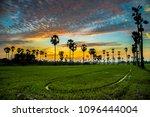sugar palm tree in twilight | Shutterstock . vector #1096444004