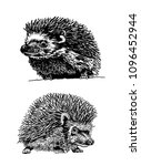 graphical set of hedgehogs... | Shutterstock .eps vector #1096452944