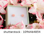 pink little roses earring studs ... | Shutterstock . vector #1096464854