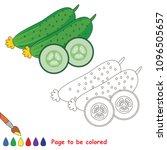 cucumber vegetable half slice... | Shutterstock .eps vector #1096505657