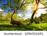 fairy summer sunset. beautiful... | Shutterstock . vector #1096531691