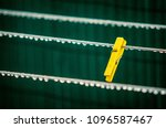 single yellow clothes pin in a... | Shutterstock . vector #1096587467
