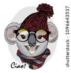 vector koala with glasses ...   Shutterstock .eps vector #1096643537
