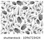 tropical fruits  illustration... | Shutterstock . vector #1096723424