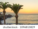 palm trees on beach on the... | Shutterstock . vector #1096813829