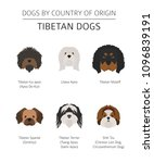 dogs by country of origin.... | Shutterstock .eps vector #1096839191