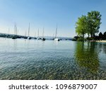 wildlife and nature of... | Shutterstock . vector #1096879007