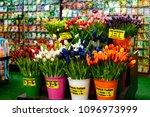colorful beautiful fresh... | Shutterstock . vector #1096973999