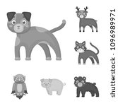 toy animals monochrome icons in ... | Shutterstock . vector #1096989971