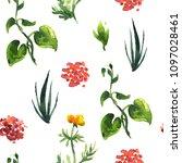 seamless plants pattern. floral ...   Shutterstock . vector #1097028461
