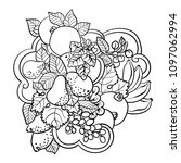 coloring pages with fruits and...   Shutterstock .eps vector #1097062994
