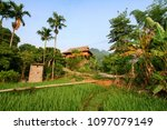 paddy field and house in vietnam | Shutterstock . vector #1097079149