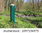 wooden post in green spring... | Shutterstock . vector #1097156975