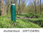 wooden pole in green forest | Shutterstock . vector #1097156981