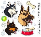 icons colored dog  shepherd ... | Shutterstock .eps vector #1097167001