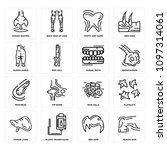 set of 16 simple editable icons ... | Shutterstock .eps vector #1097314061