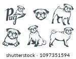 Stock vector pug dog set head of an pug pets for design vector graphics to design 1097351594
