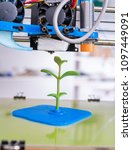 young plant growing.3d printer... | Shutterstock . vector #1097449091