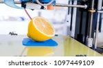 ripe slice of yellow lemon... | Shutterstock . vector #1097449109