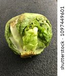 bad expired iceberg lettuce old | Shutterstock . vector #1097449601