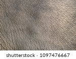 Elephant Skin Texture Abstract...