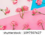 blue and pink pastel background ... | Shutterstock . vector #1097507627