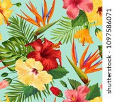 watercolor tropical flowers... | Shutterstock .eps vector #1097586071