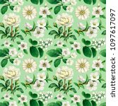 watercolor white flowers.... | Shutterstock . vector #1097617097
