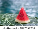 a water melon slice on the... | Shutterstock . vector #1097654954