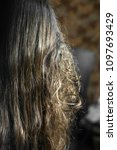 Small photo of Girl with long brown snarl hair back without conditioner