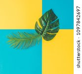 tropical and palm leaves in... | Shutterstock . vector #1097842697
