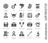 urology vector flat glyph icons.... | Shutterstock .eps vector #1097853719