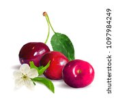 fresh  nutritious and tasty... | Shutterstock .eps vector #1097984249