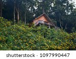 cabin in the woods | Shutterstock . vector #1097990447