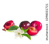 fresh  nutritious and tasty... | Shutterstock .eps vector #1098031721