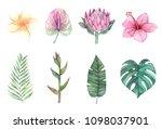 watercolor illustrations. green ... | Shutterstock . vector #1098037901
