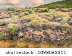 colourful shrubs among a rocky... | Shutterstock . vector #1098063311